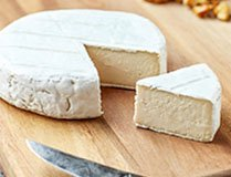 Australian Dairy Products Exporters