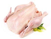 Chicken Exporters in Australia